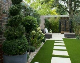 باغبانی      کاشت چمن طبیعی   سمپاشی