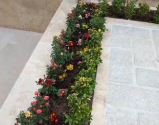 باغبانی و گلکاری سمپاشی کود ،تیلرزنی در سراسر مشهد