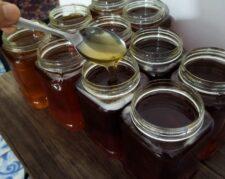 عسل طبیعی کندو