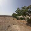 احمد آباد مستوفی زمین 12050 متر دوکله چهار  دیواری